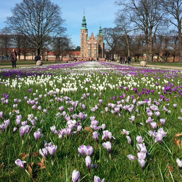 Bliss Copenhagen