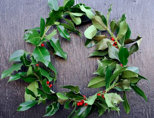 Easy DIY holly wreath