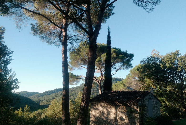 Global vibes in Provence